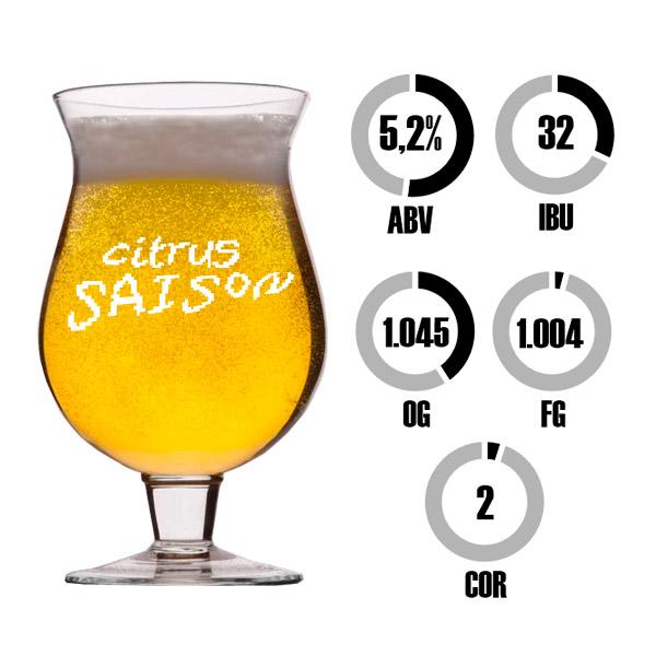 Kit Receita Cerveja Fácil Citrus Saison