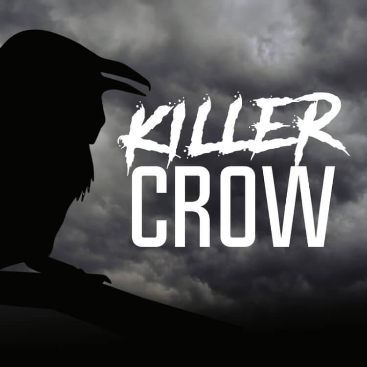 Kit Receita Cerveja Fácil Killer Crow Dark Mild