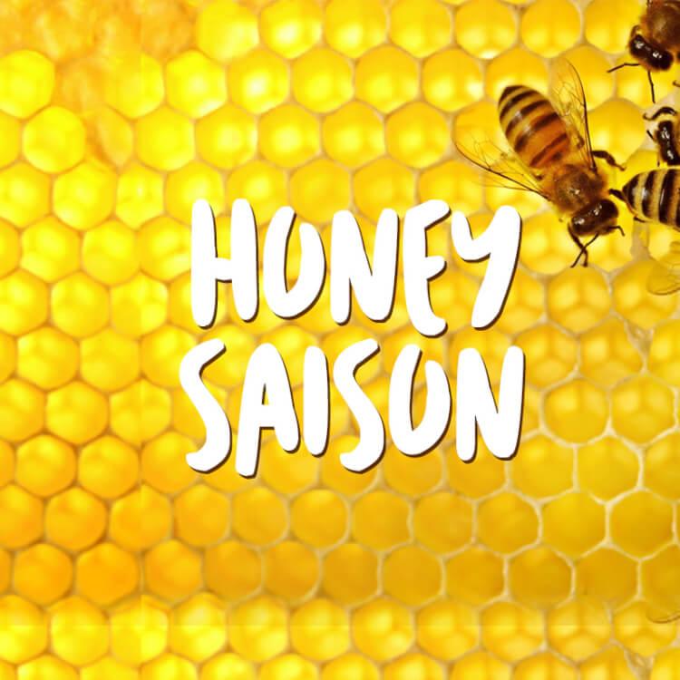 Kit Receita Cerveja Fácil Honey Saison