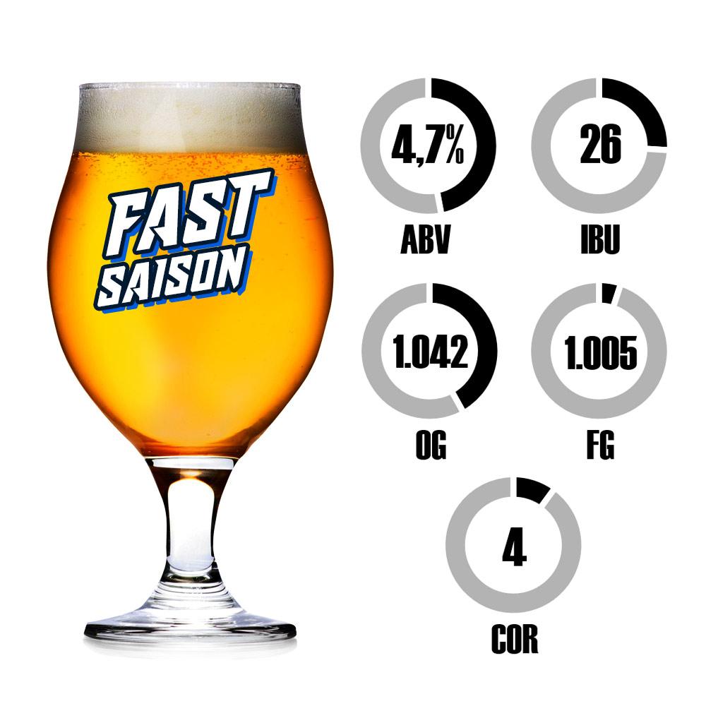 Kit Receita Cerveja Fácil Fast Saison